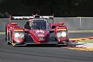IMSA Bomarito takes brilliant pole for Mazda