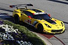 IMSA Magnussen and Corvette ready to bounce back in Monterey