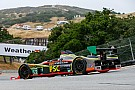 IMSA PR1 and Alex Job Racing master Monterey