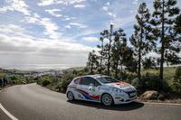 ERC Foto - Marco Cid, Peugeot 208 R2