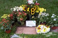 Imola to honour Senna