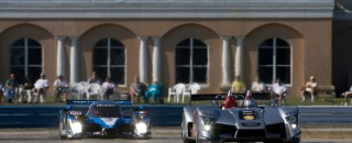 ALMS Audi preview