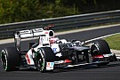 2012 Sauber 'best car on grid' - Marko