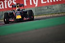 Ricciardo sure Red Bull will be stronger in the race