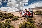 Dakar trucks: Stacey wint thriller voor De Rooy, weer Nederlands podium