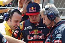 Formula 1 Pujolar confirms split with Toro Rosso