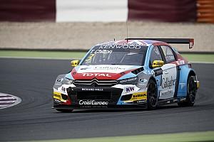 WTCC Actualités Tom Chilton prolonge avec le Sébastien Loeb Racing