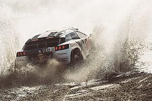 Dakar Réactions Loeb - Sans souci pour Peterhansel,