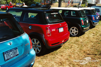 Mini's in a row