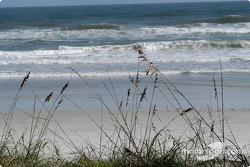 Daytona Beach scenes