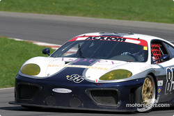 #85 Falcon Racing Ferrari 360GT: Nick Longhi, Joshua Rehm, Lawrence Stroll
