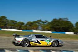 #04 Robertson Racing Doran Ford GT Elan Power: David Murry, Anthony Lazzaro