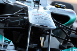 Nico Rosberg, Mercedes GP F1 Team, MGP W02, detail