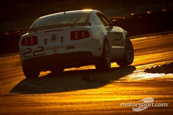 #22 Starworks Motorsport Mustang Boss 302R: Ryan Dalziel, Enzo Potolicchio