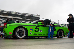 #5 TPN Racing/Blackforest Dodge Challenger: Tom Nastasi, Stan Wilson