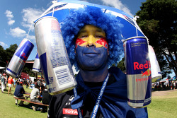 Red Bull Racing fan