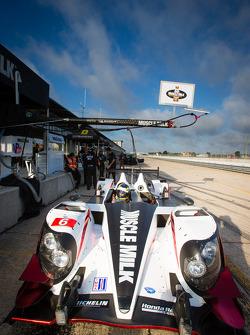#6 Muscle Milk Pickett Racing HPD ARX-03c Honda: Lucas Luhr, Klaus Graf