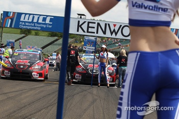 Marc Basseng, SEAT Leon WTCC, ALL-INKL.COM Munnich Motorsport and Grid Girl