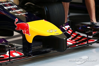 Red Bull Racing RB10 nosecone