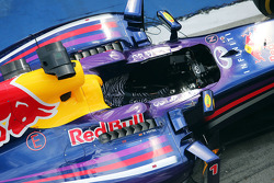 Red Bull Racing RB10 of Sebastian Vettel, Red Bull Racing in parc ferme with leopard print cockpit seat