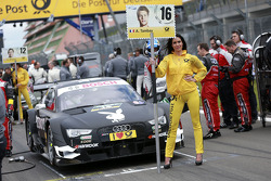 Gridgirl of Adrien Tambay, Audi Sport Team Abt Sportsline Audi RS 5 DTM