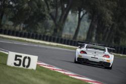 #33 Roal Motorsport BMW Z4: Alex Zanardi