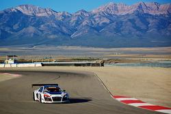#23 M1 Racing Audi R8 Ultra: Walt Bowlin