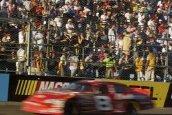 Dale Earnhardt Jr. at speed