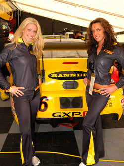 Gorgeous Pirelli girls