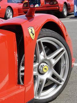 Ferrari Enzo detail