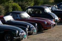 A few of many British roadsters that can be found around Le Mans during the 24 Hours