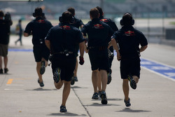 Scuderia Toro Rosso-Ferrari