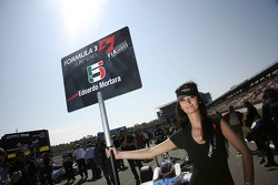 Grid girl of Edoardo Mortara, Signature, Dallara F308 Volkswagen