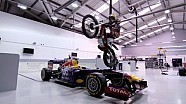 DOUGIE DOES RED BULL RACING