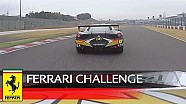 Ferrari Challenge APAC – Hutasoit, Weiland, and Wang blazed their way to the podium