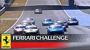 Ferrari Challenge Europe - Jerez 2016 - Trofeo Pirelli - Race 2