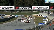 DeltaWing - Mission Accomplished: Petit Le Mans Top Five