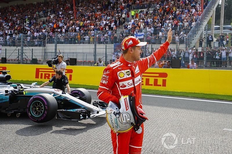 Plecsni és lyukacsos festés Vettel sisakján
