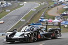 IMSA Cadillac drivers proud of titles despite Petit Le Mans disappointment