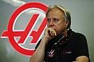 Haas depresso: