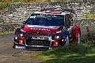 WRC Loeb, Korsika'daki erken kazası nedeniyle hayal kırıklığı yaşıyor