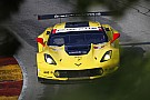 Jan Magnussen: I'm clinging on to GTLM points lead