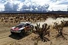 Loeb sebut faktor navigasi berperan besar di Reli Dakar 2017