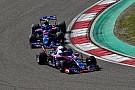 """Fórmula 1 Toro Rosso celebra: """"Melhor situação em que já estivemos"""""""