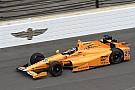 El incidente de Alonso con dos pájaros en Indianápolis
