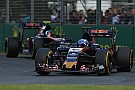 У пилотов Toro Rosso не нашлось претензий друг к другу