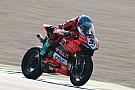 Superbike-WM Melandris Fahrwerks-Schwingungen: