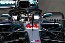 Hamilton, Vettel'le savaşmayı bekliyor, Ricciardo hemen fark açmayı umuyor