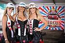 WTCC Галерея: дівчата гоночного вікенду на будь-який смак