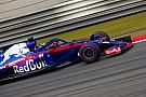 В Toro Rosso извлекли выгоду из марафонского опыта Хартли